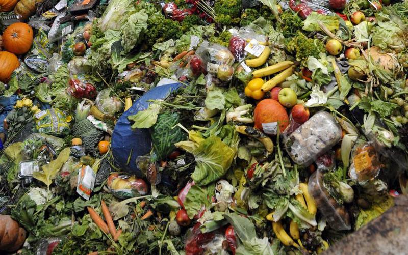 Жителей Сиэтла будут штрафовать за выбрасывание еды