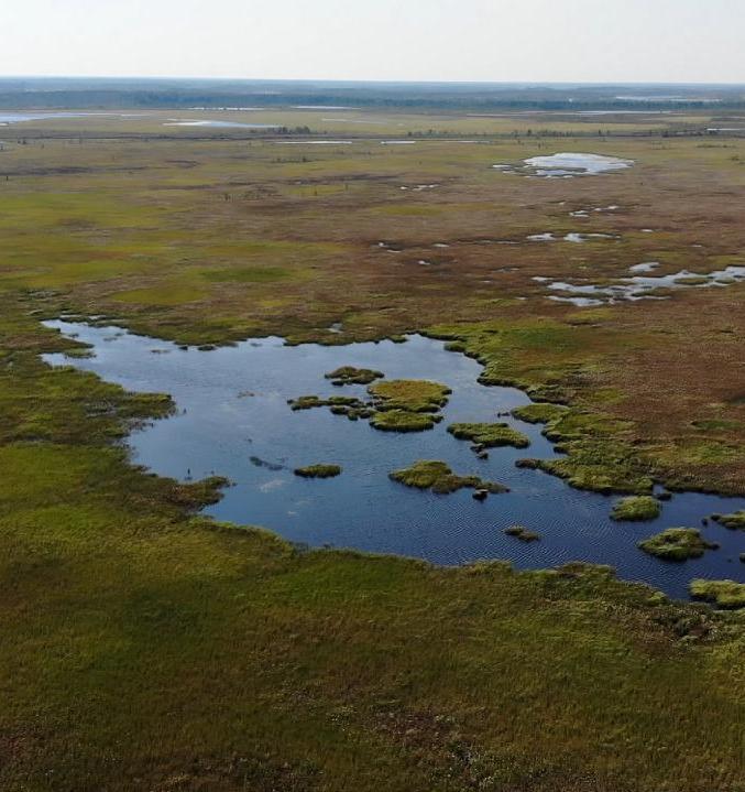 Ссылка дня: верят ли россияне в климатический кризис