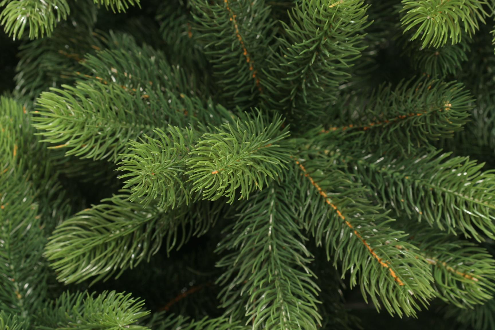 Новогодние елки соберут на переработку в Москве