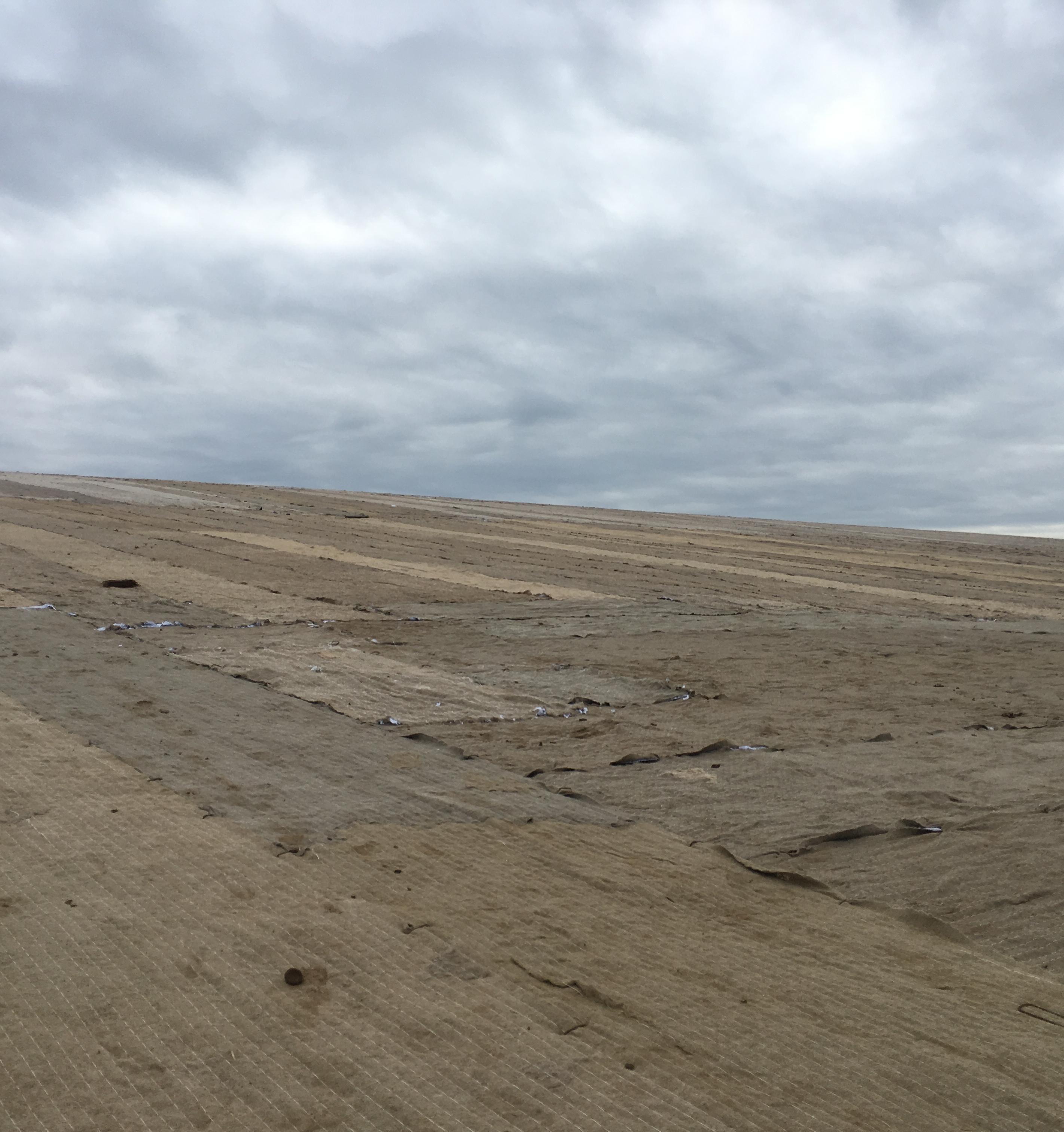 На бывшем полигоне ТБО в Нижегородской области скоро появится зеленая трава