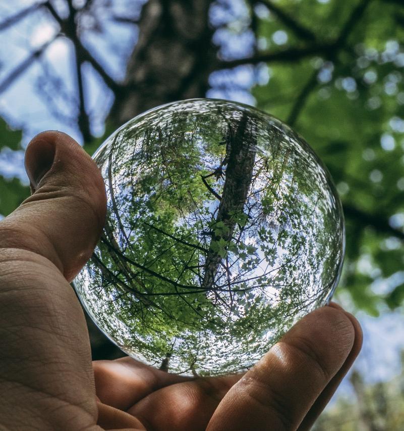 30 лайфхаков, которые помогут сделать жизнь экологичнее