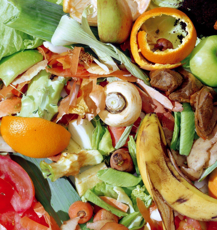 Стартовал конкурс проектов по утилизации органических отходов