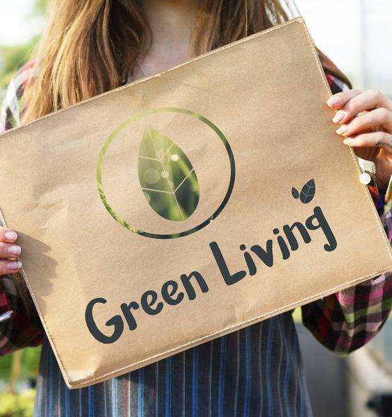 7 шагов на пути к экологичной жизни