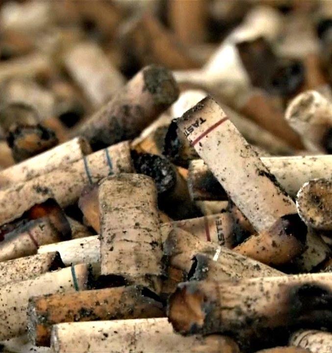 В России разработают технологию утилизации сигаретных окурков