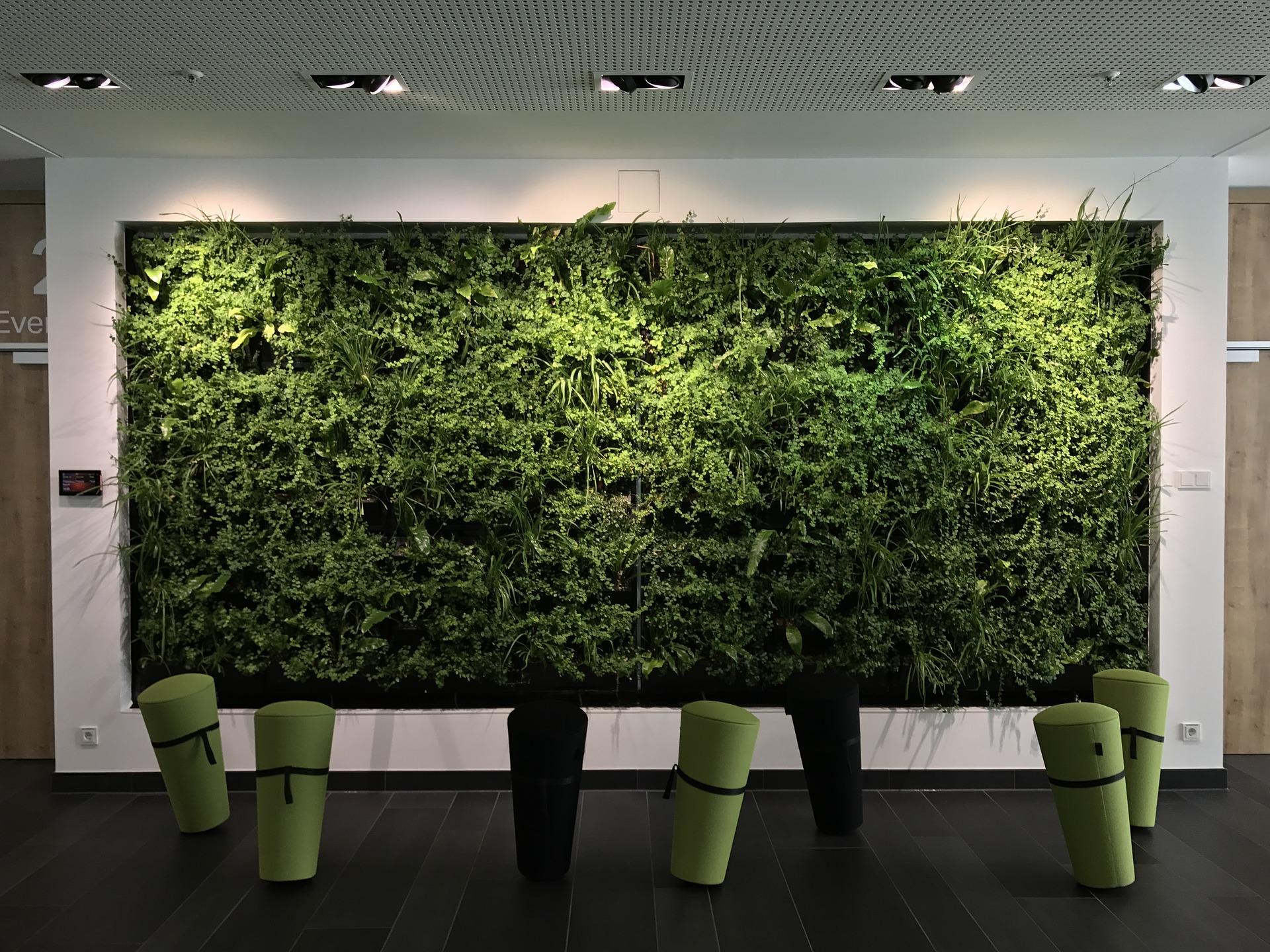 Объявлен набор участников рейтинга «Зеленые офисы России-2017»