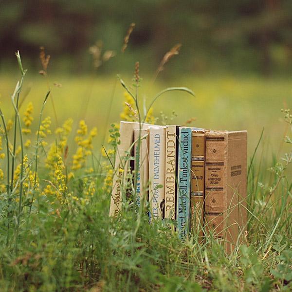 Что делать с ненужными книгами: 12 лучших полок для буккроссинга в Москве