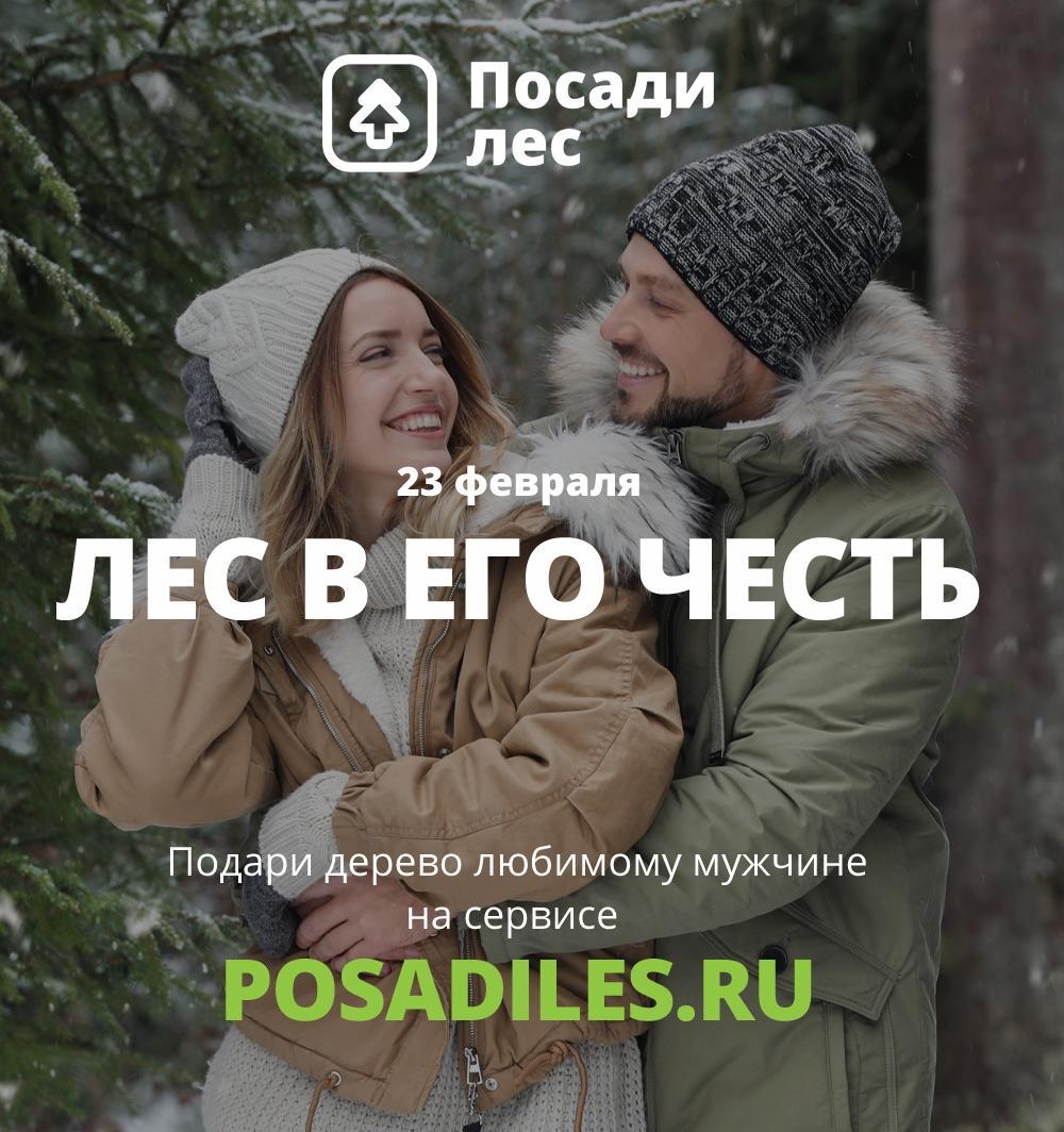 Накануне 23 февраля стартовала акция «Деревья лучше носков»