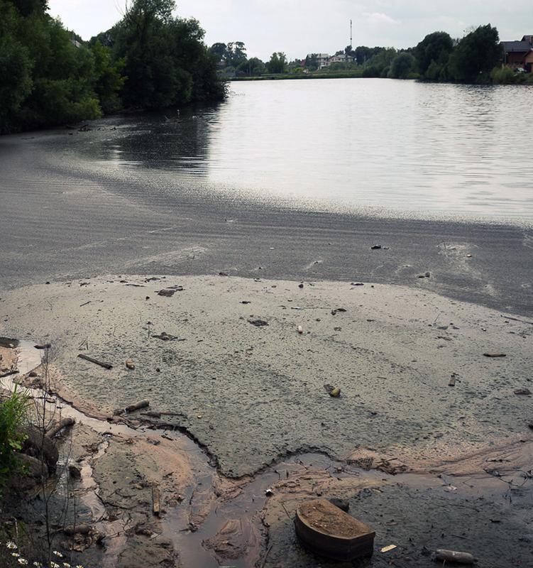 Как жители Новой Москвы спасают реку и пруд от вредных выбросов