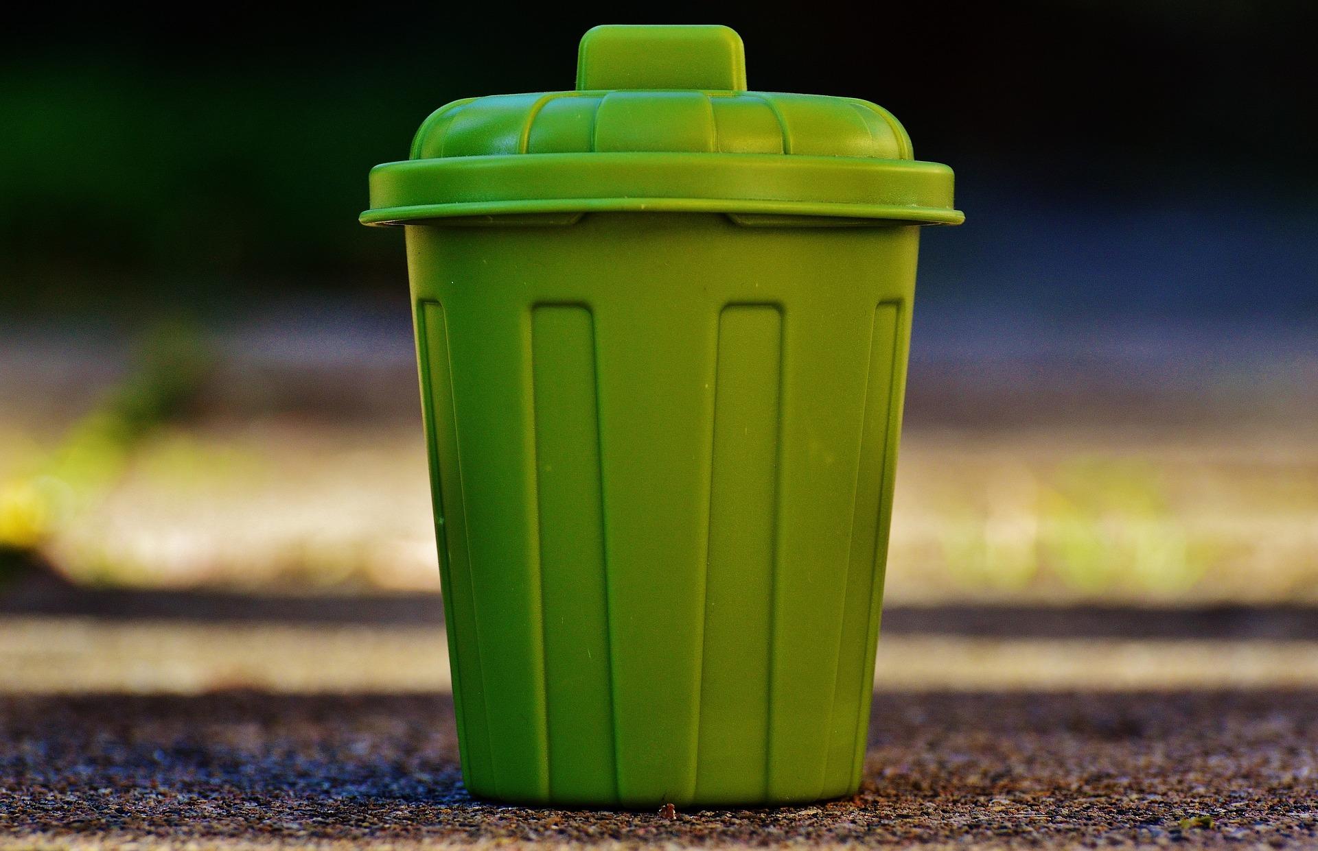 День раздельного сбора мусора могут ввести в российских школах