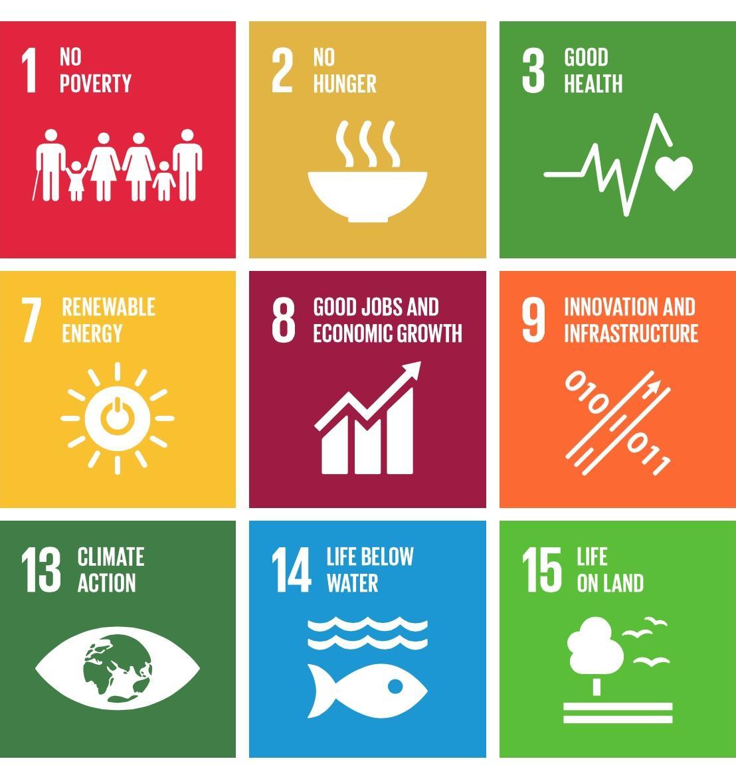 Объявлен конкурс о целях устойчивого развития
