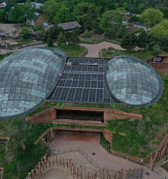 Зоопарк Копенгагена полностью перешел на солнечную энергетику