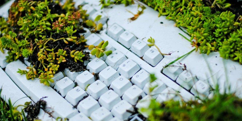 Вышла первая книга про экологичный офис на русском языке