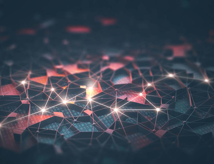 Технологии для экологии: как можно сохранить биоразнообразие с помощью искусственного интеллекта