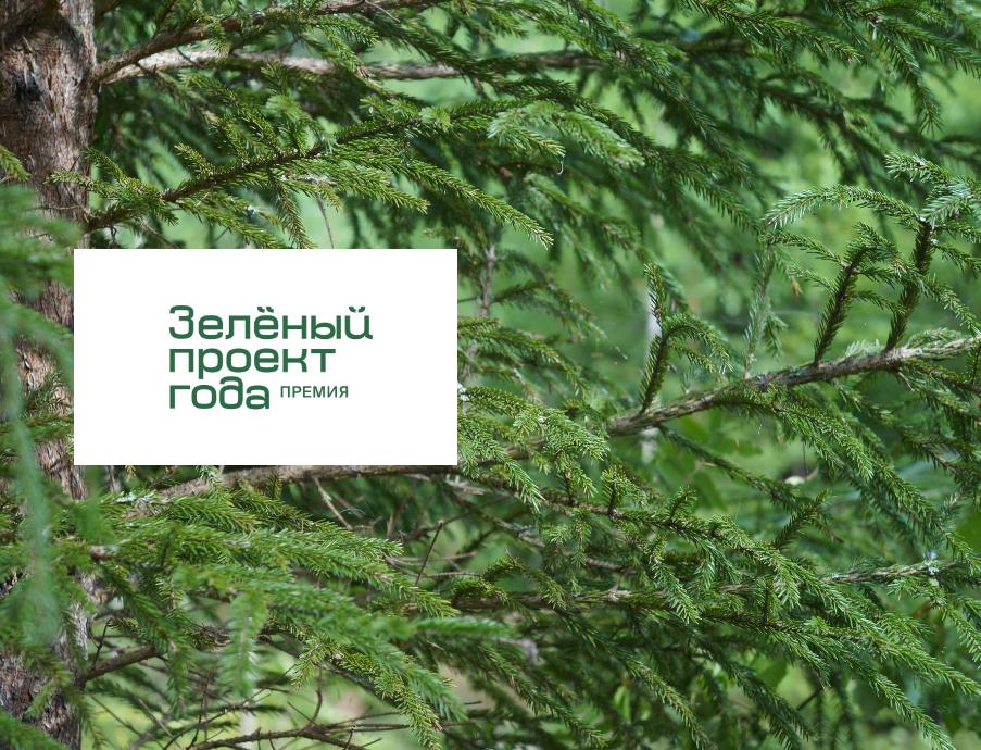 Циклическая экономика для этикеток, переработка деревянных «отходов», уход за лесом: заканчивается прием заявок на премию «Зеленый проект года — 2020»