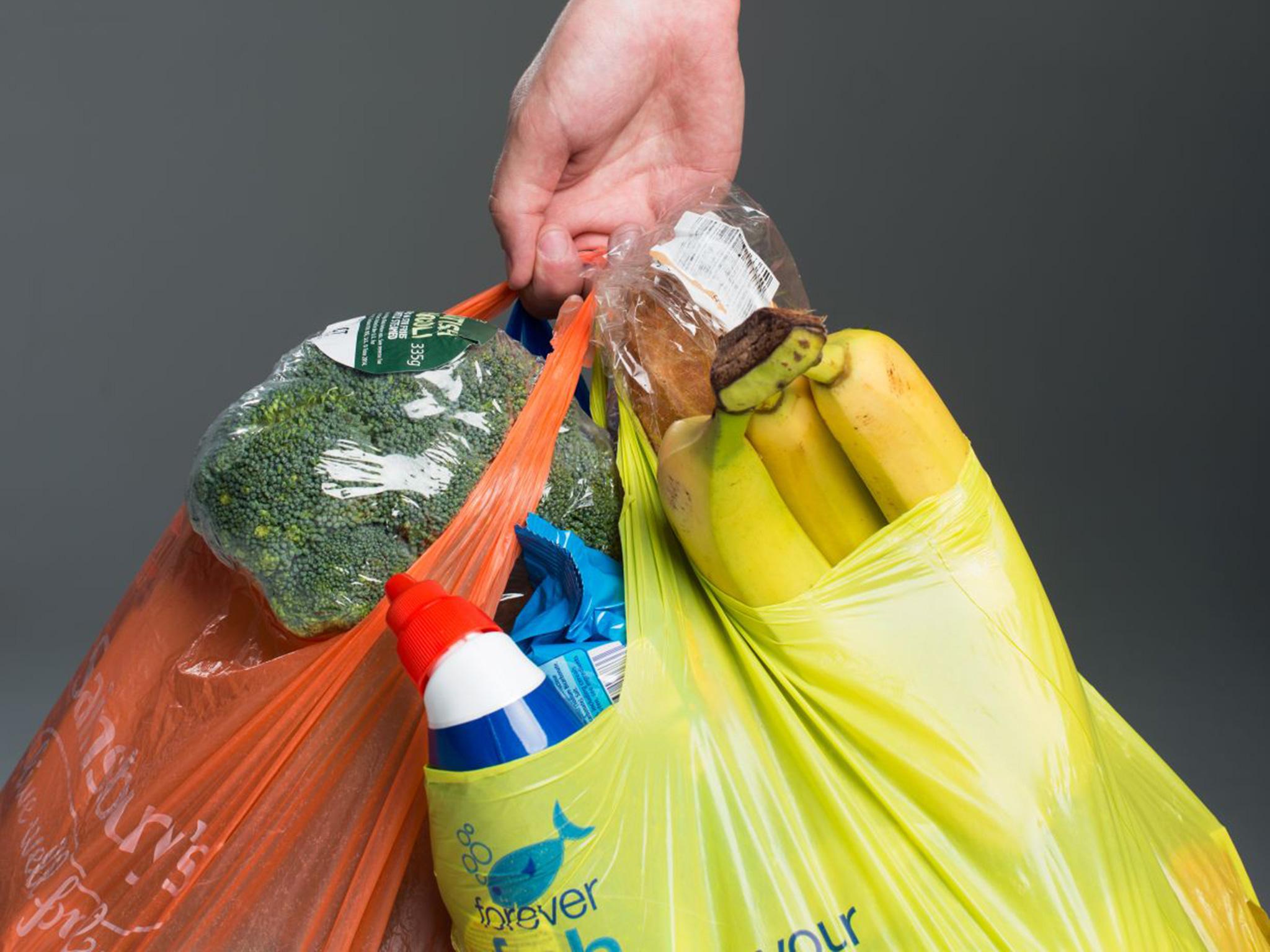 В сети запустили петицию о запрете полиэтиленовых пакетов в России
