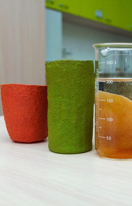 Самарские ученые изобрели стаканы из яблочного пюре
