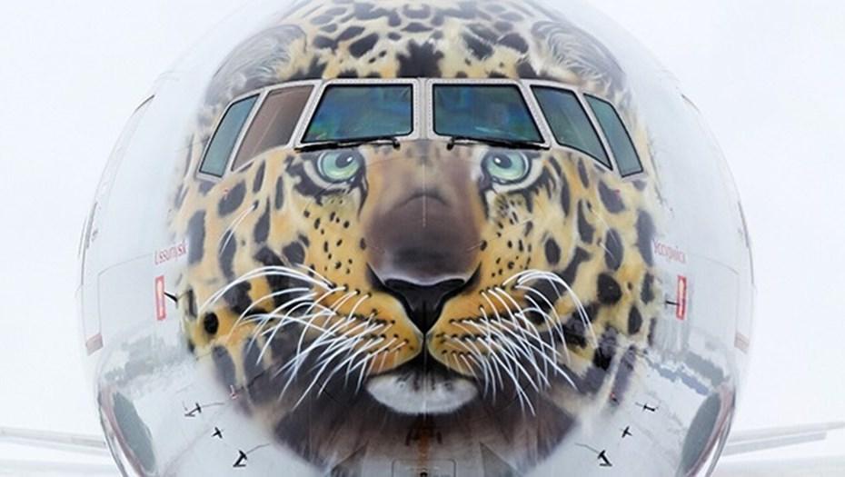 Авиакомпания «Россия» раскрасила самолеты в честь Года экологии