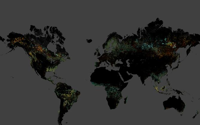 Google выпустил карту вырубки лесов