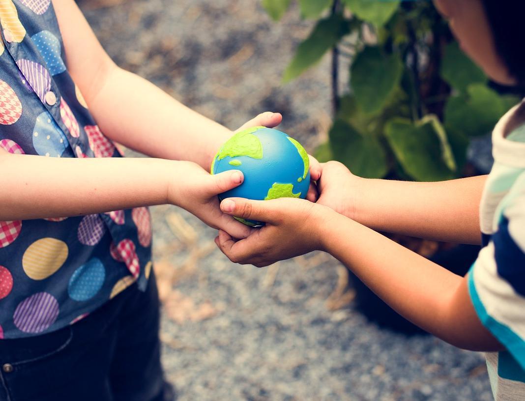 Как превратить прогулку с ребенком в урок экологии: 7 интересных игр