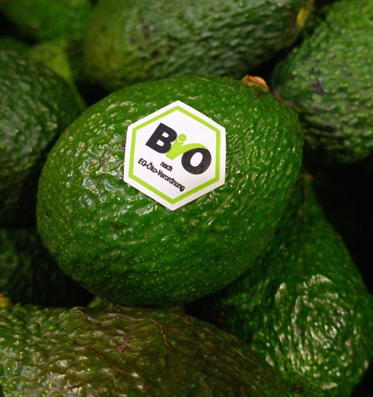 Почти половина экологичных производителей обманывает покупателей