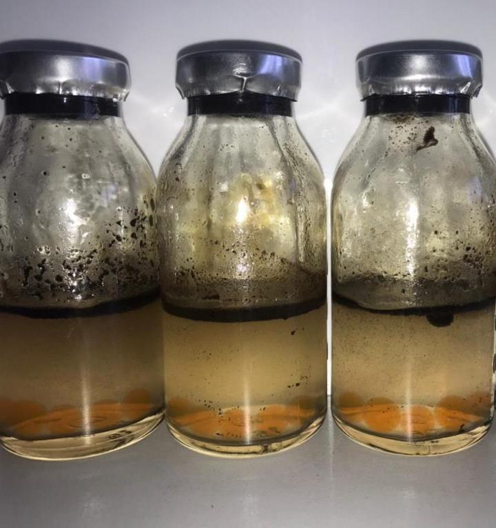 Новый препарат томских ученых очистит водоемы Коми от нефти