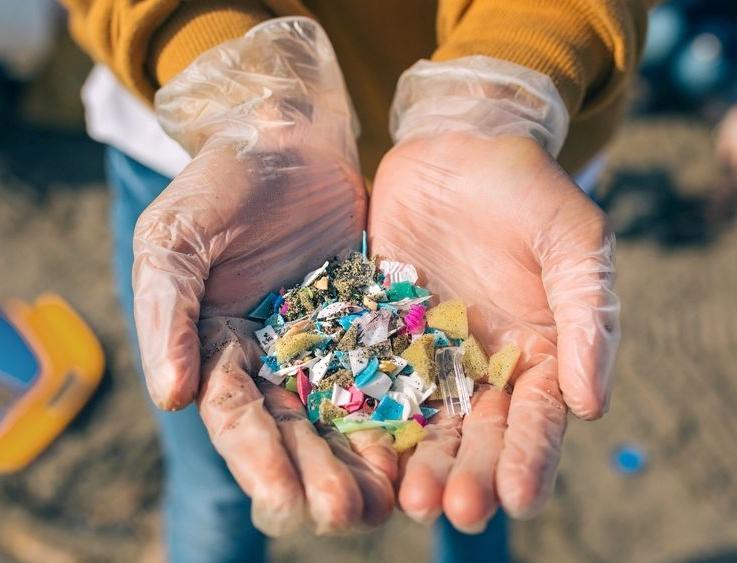 Ученые исследовали связь морских течений и скоплений микропластика на дне океана