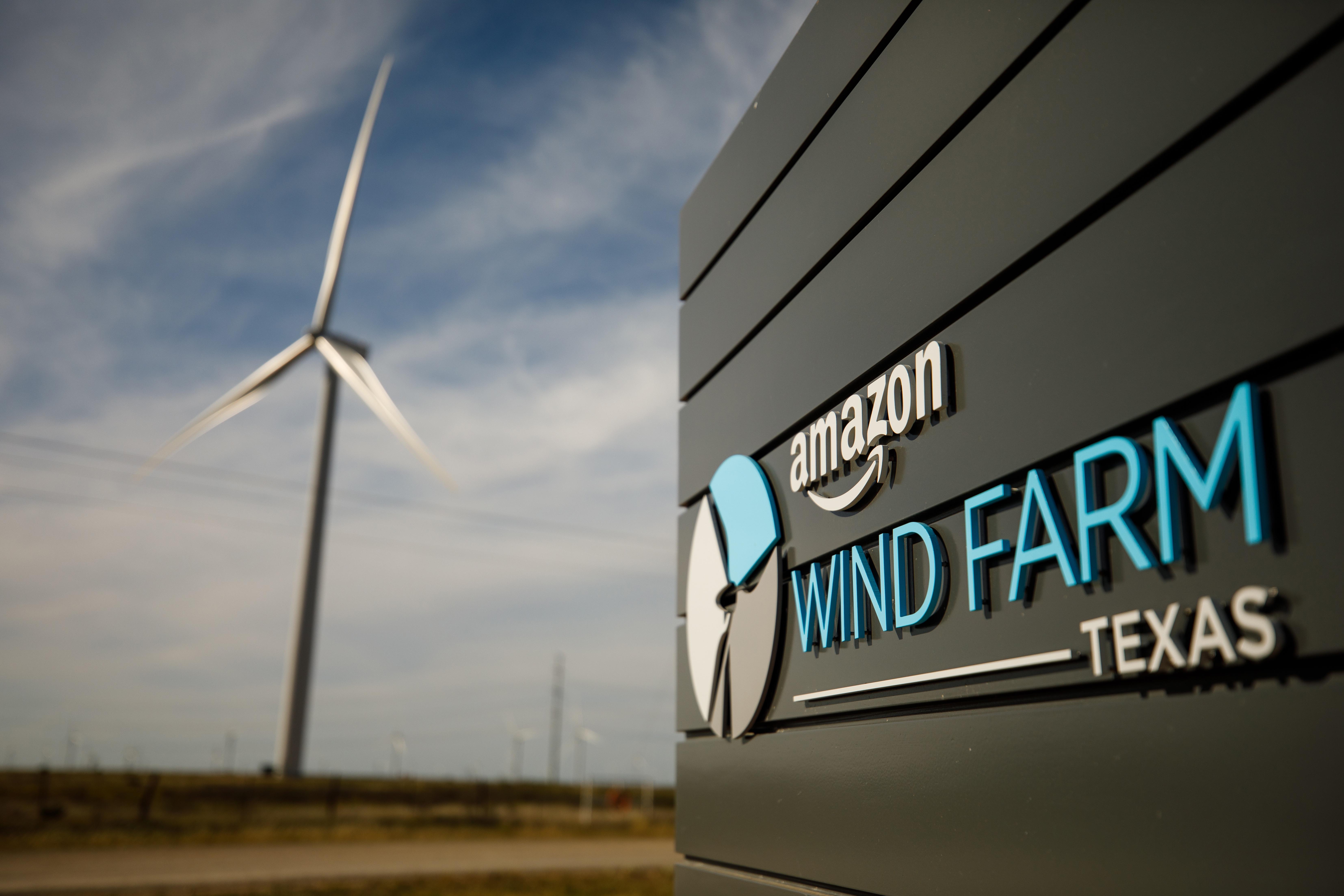 Зеленая корпорация: 13 экологических инициатив Amazon