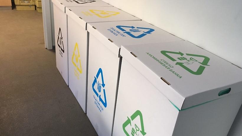 В Подмосковье внедрят раздельный сбор мусора до принятия поправок в федеральный закон
