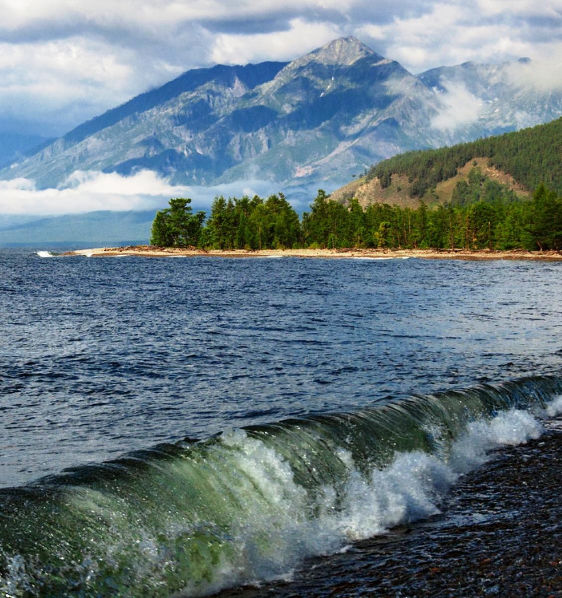 ВЦИОМ: Россияне назвали главные экологические проблемы