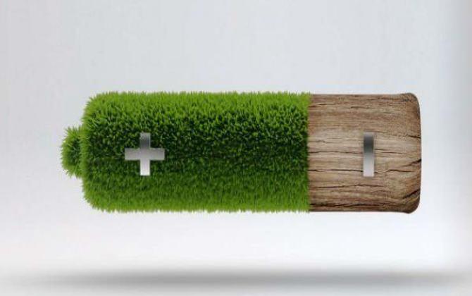 Вещь дня: экологичные батарейки из дерева